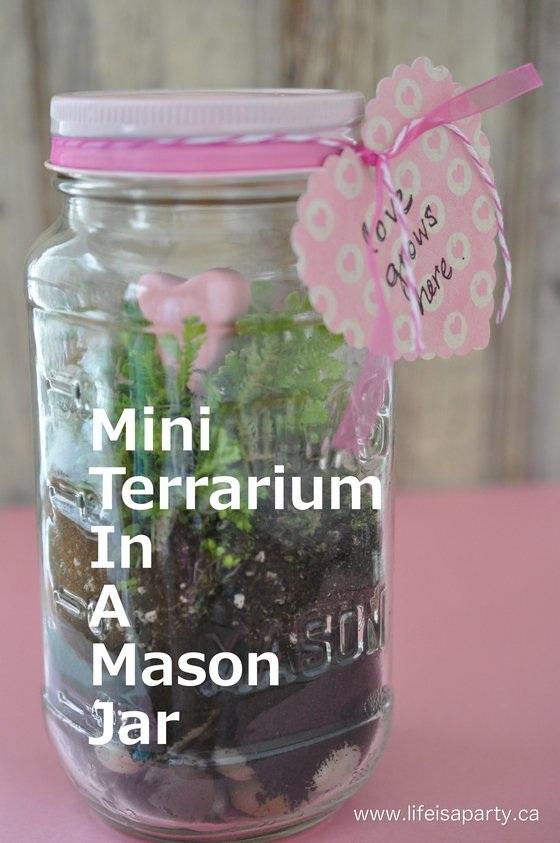 Mini Valentine's Day Terrarium in a Mason Jar