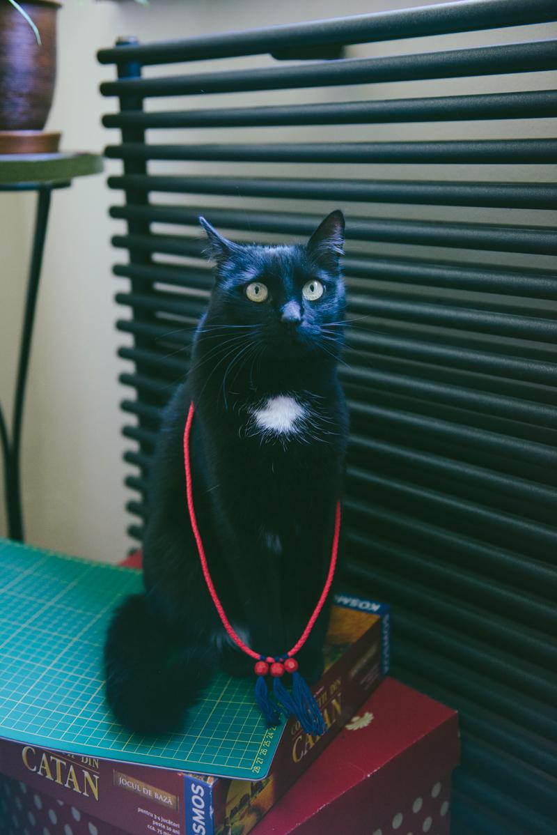 Diy: bead & tassel necklace