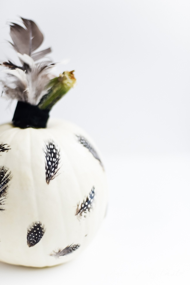 FEATHERS DECOUPAGE PUMPKIN