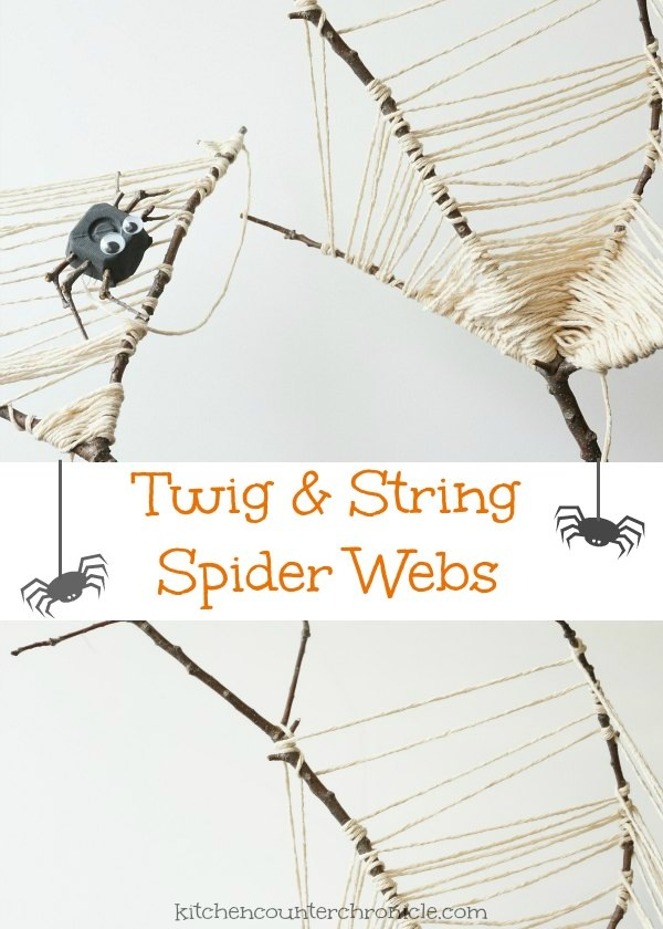 Twig Spider Web Craft Nature Craft for Kids