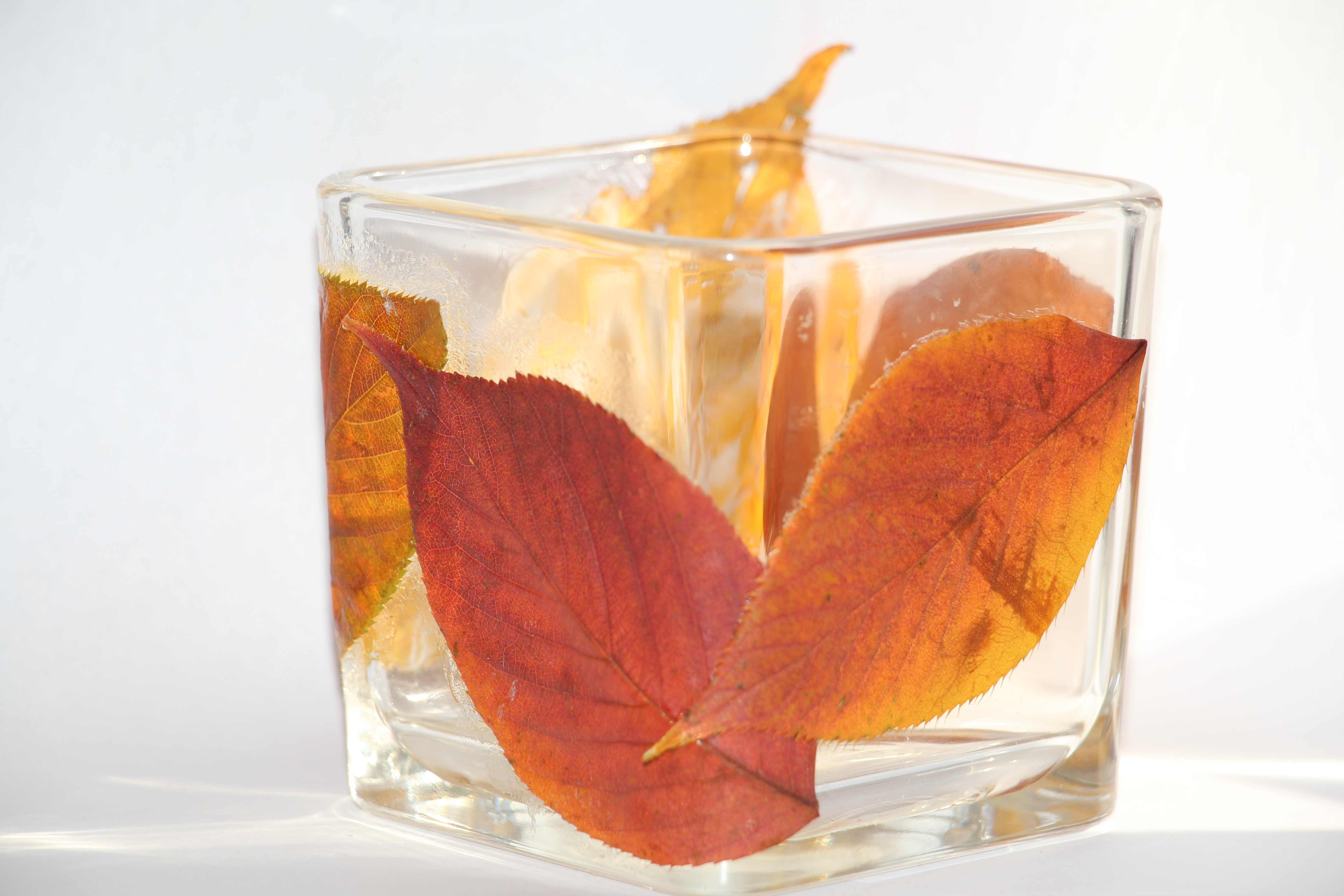 DIY Orange Cinnamon Spice Candle