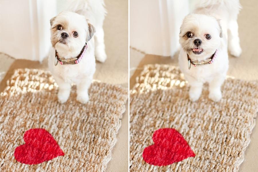 DIY Valentine Welcome Rug Dog Welcome Rug