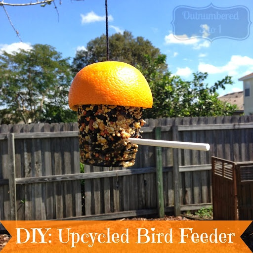 DIY Upcycled Bird Feeder