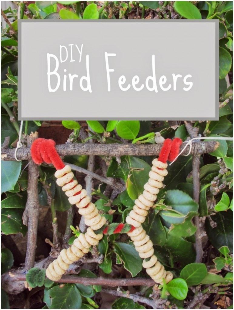 Guest Post DIY Bird Feeders