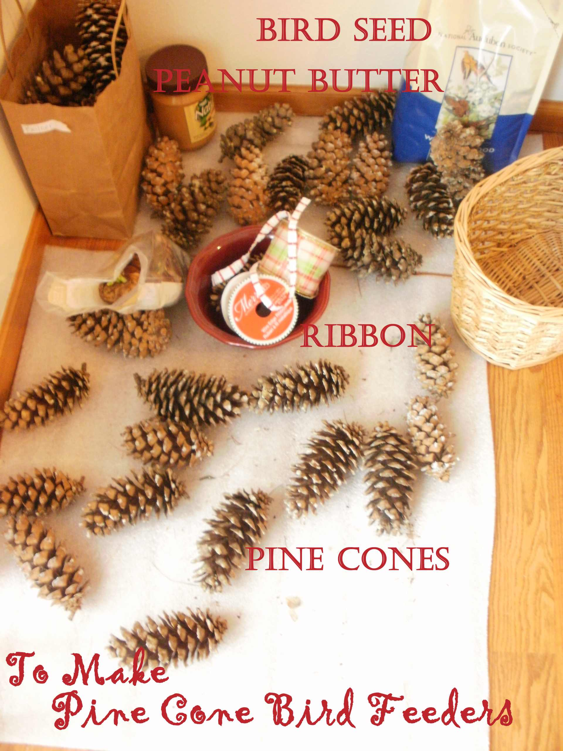 Pine Cone Bird Feeders