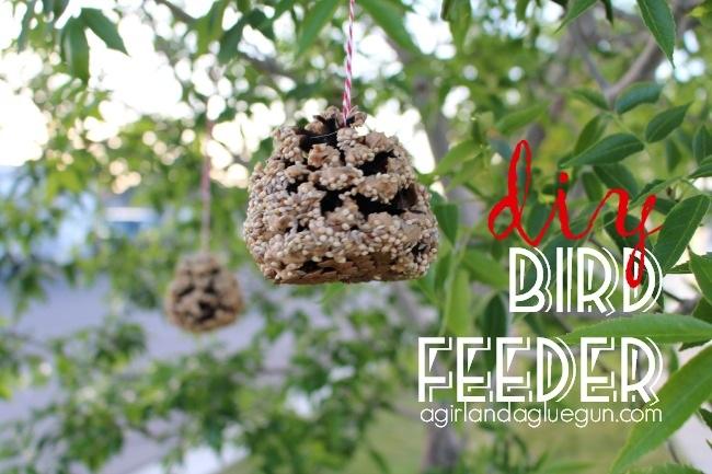 Diy bird feeder Kid craft!