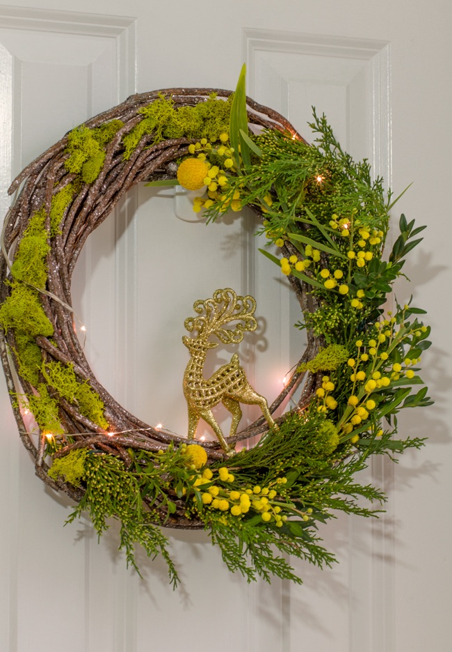 Planty wishes for 2016 A living wreath