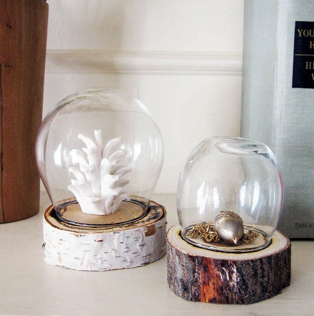 DIY Branch Dome Display Jar