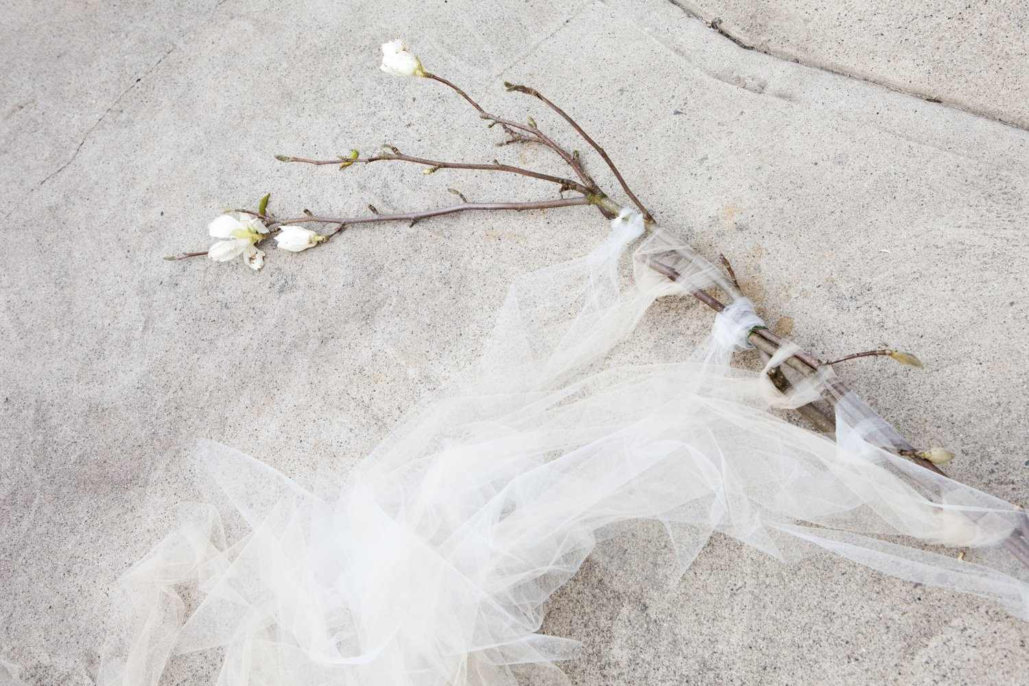 How to Make a Magnolia Branch Ceremony Backdrop