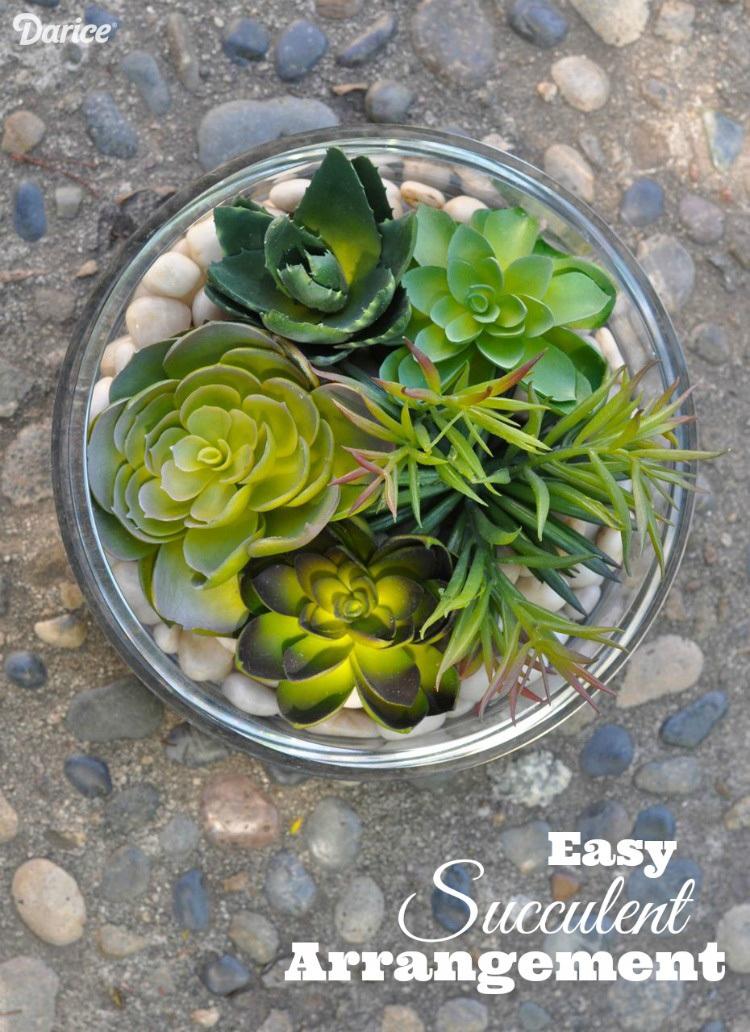 Succulent Arrangement DIY Darice Crafts