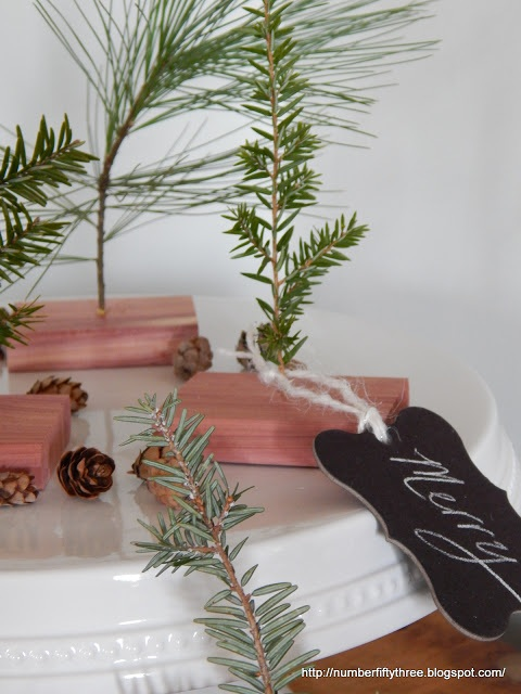 Mini Cedar & Pine Trees
