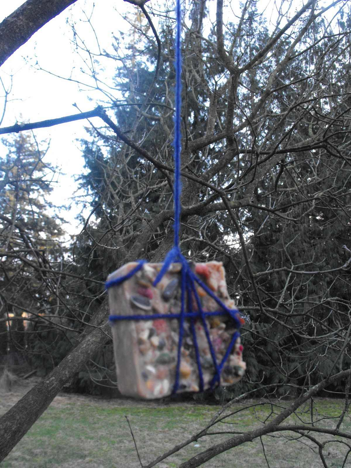 How to make your own suet bird feeders