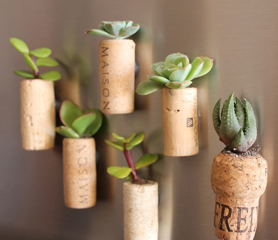 Cork Planters | Upcycle That