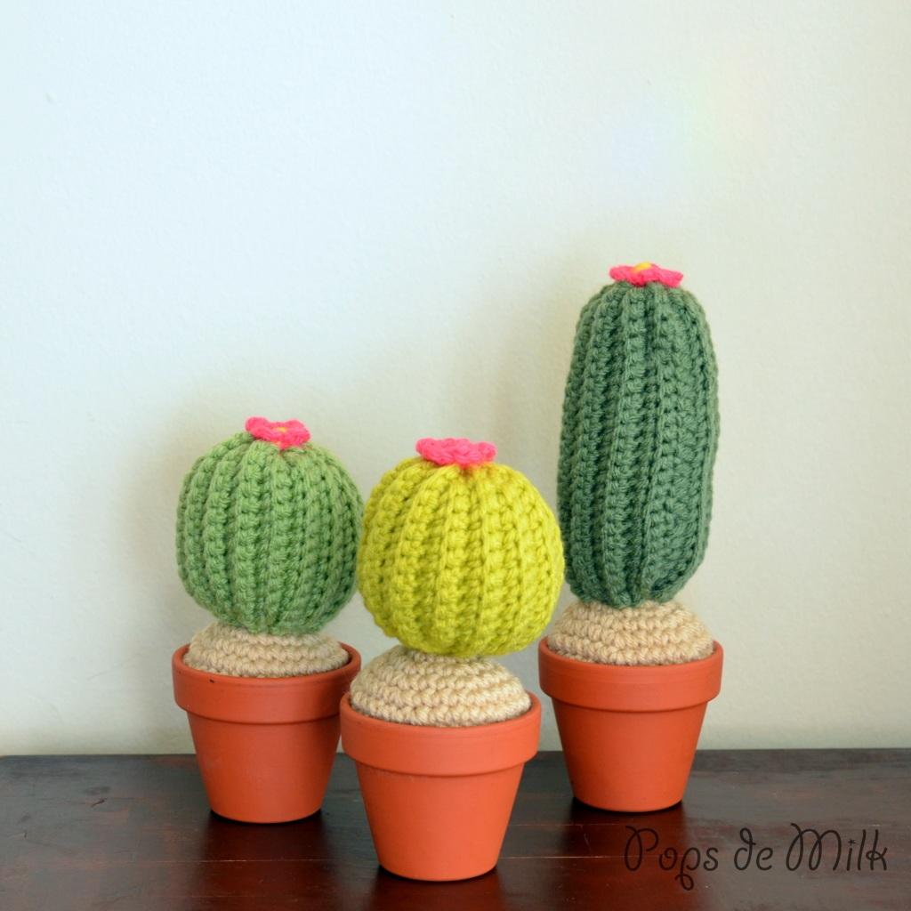 Yarn Garden Addition Crochet Cactus Pattern
