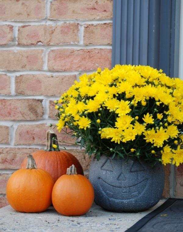 Plastic Pumpkin Bucket Planter {31 Days of Halloween Day 2}