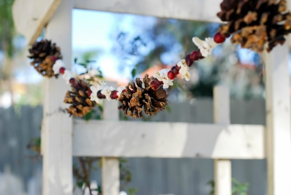 DIY Natural Christmas Garland