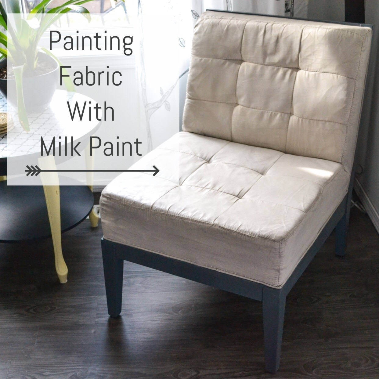 Painting Fabric with Milk Paint