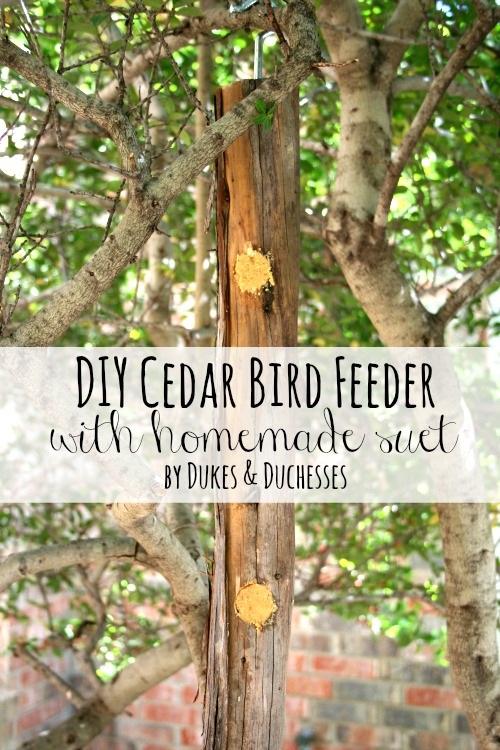 DIY Cedar Bird Feeder with Homemade Suet
