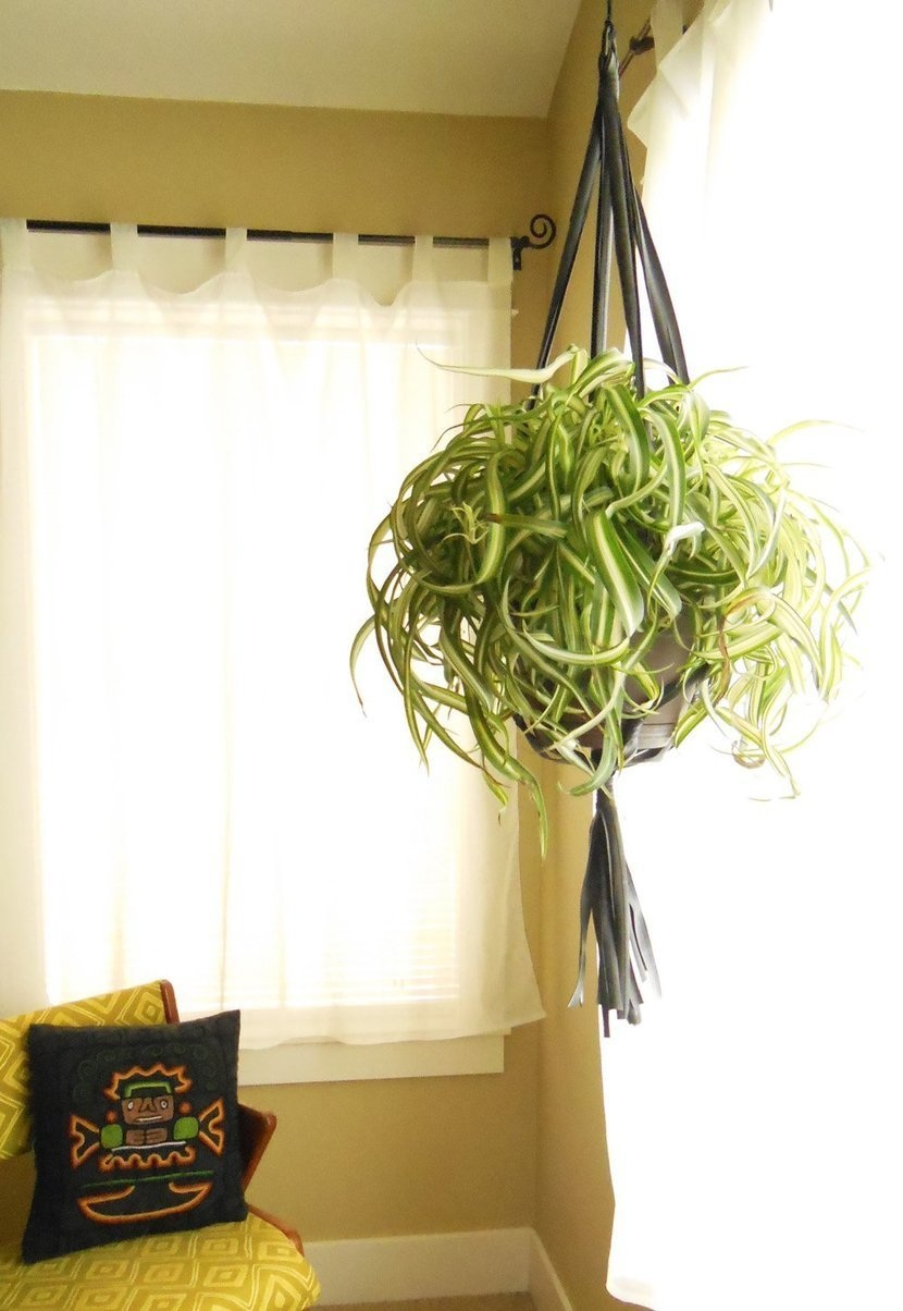 DIY Room Decor How To Make A Recycled Bike Tube Plant Hanger