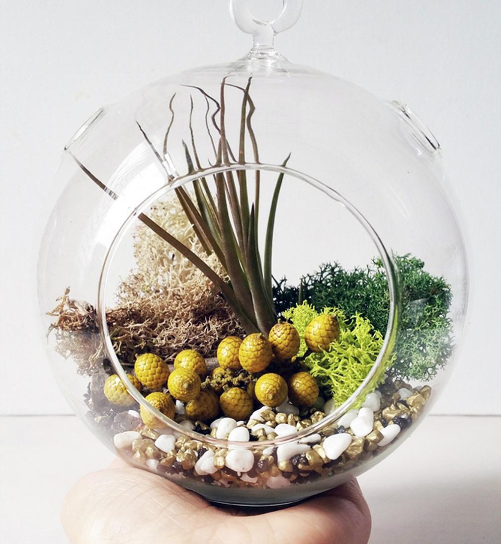 Terrarium Tutorial