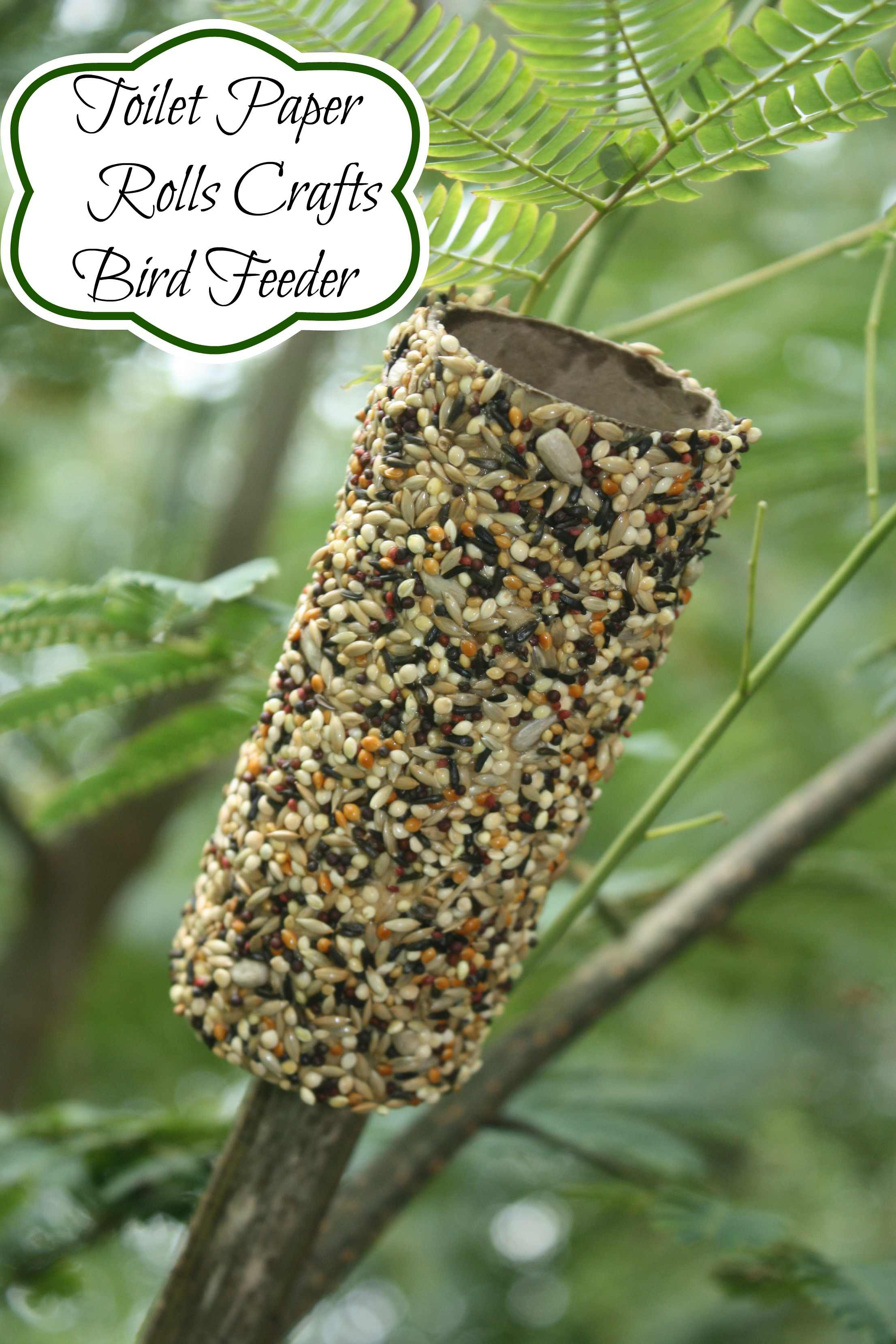 Recycled Toilet Paper Roll Crafts Bird Feeder